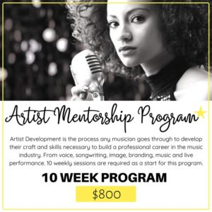 Artist Mentorship Program